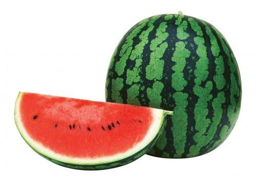 千姫[大玉西瓜] - e-種や 国内最大級の野菜種・花種・苗・農業資材の販売店