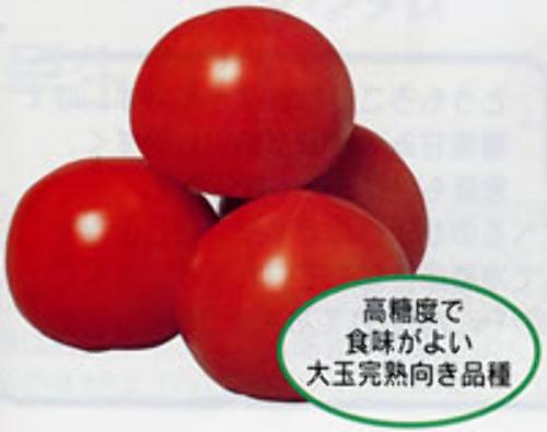 00000945_photo1.jpg