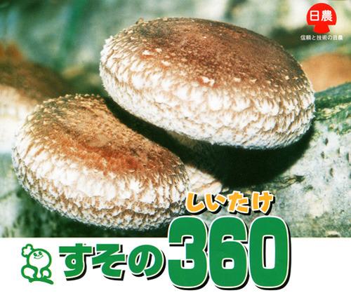 00005119_photo1.jpg