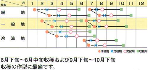 00005568_photo2.jpg