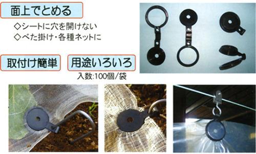 00006161_photo1.jpg