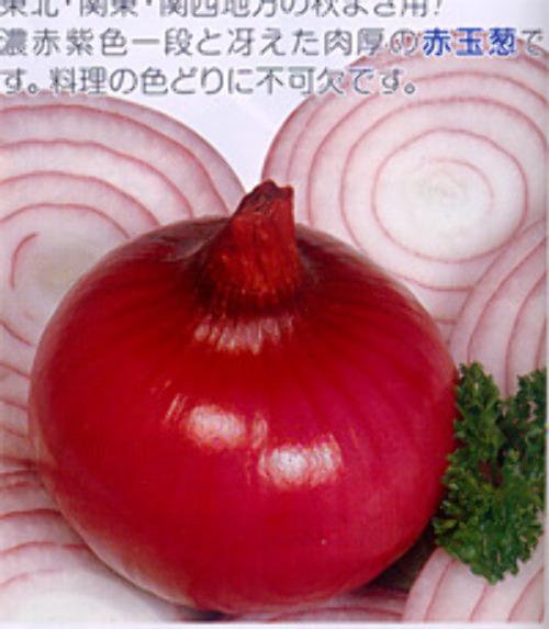 00006722_photo1.jpg