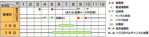 00007310_photo2.jpg