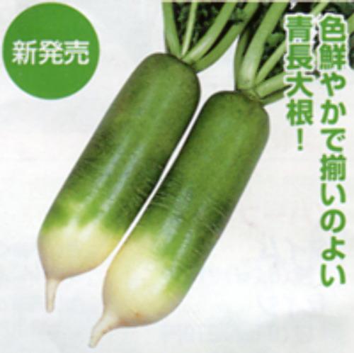 00007488_photo1.jpg