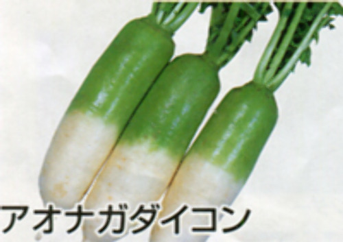 00007489_photo1.jpg