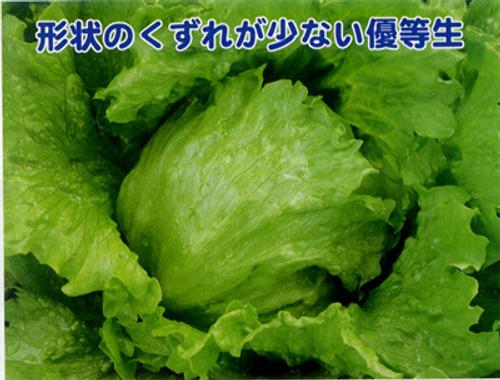 00011482_photo1.jpg