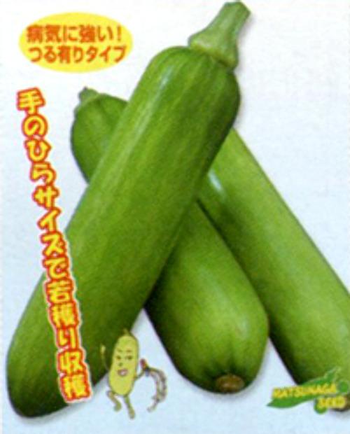 カボッキー[ズッキーニ]【タネ】