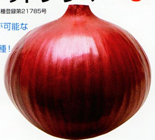 00014480_photo1.jpg