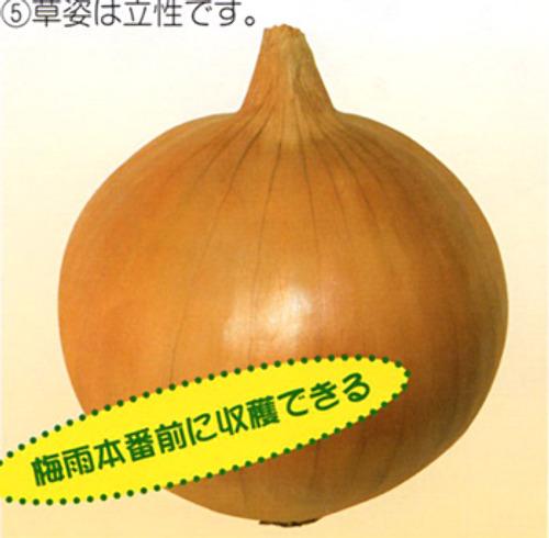 00014486_photo1.jpg