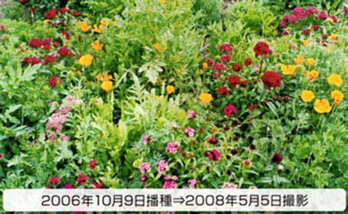 00014782_photo1.jpg