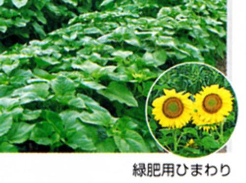 00014870_photo1.jpg
