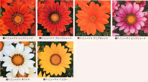 00015349_photo1.jpg
