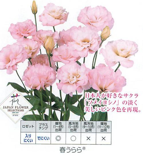 00015766_photo1.jpg