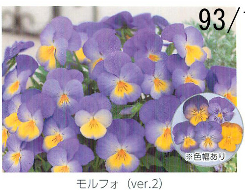 00015860_photo1.jpg