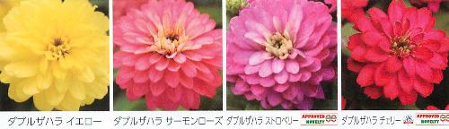 00016092_photo1.jpg
