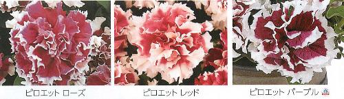 00016122_photo1.jpg