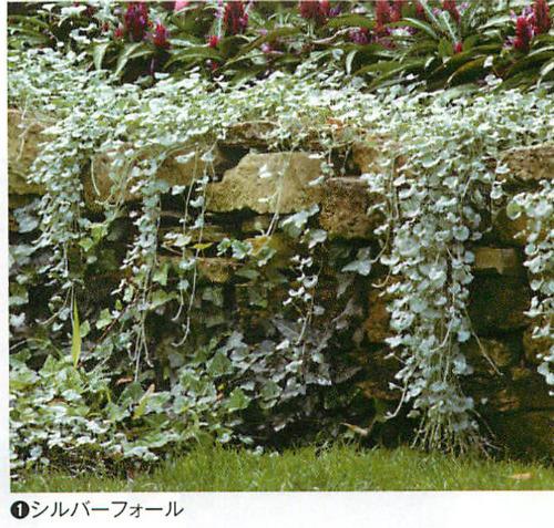 00016422_photo1.jpg
