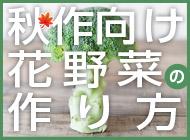 秋作向け花野菜の作り方