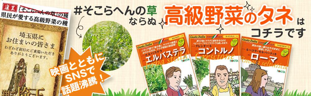 トキタ種苗埼玉県コラボ野菜